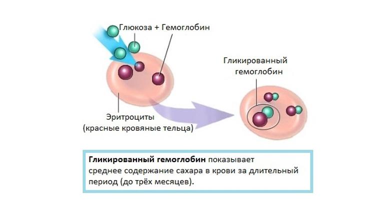 гликированный гемоглобин норма при сахарном диабете