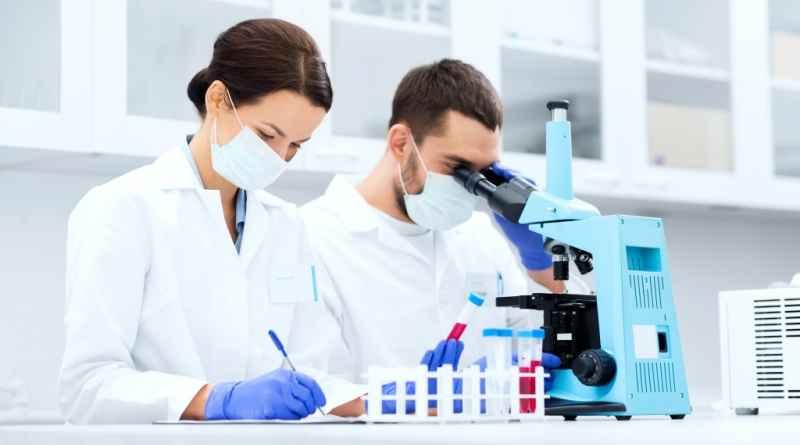 ЛДГ в биохимическом анализе крови и причины повышения показателя
