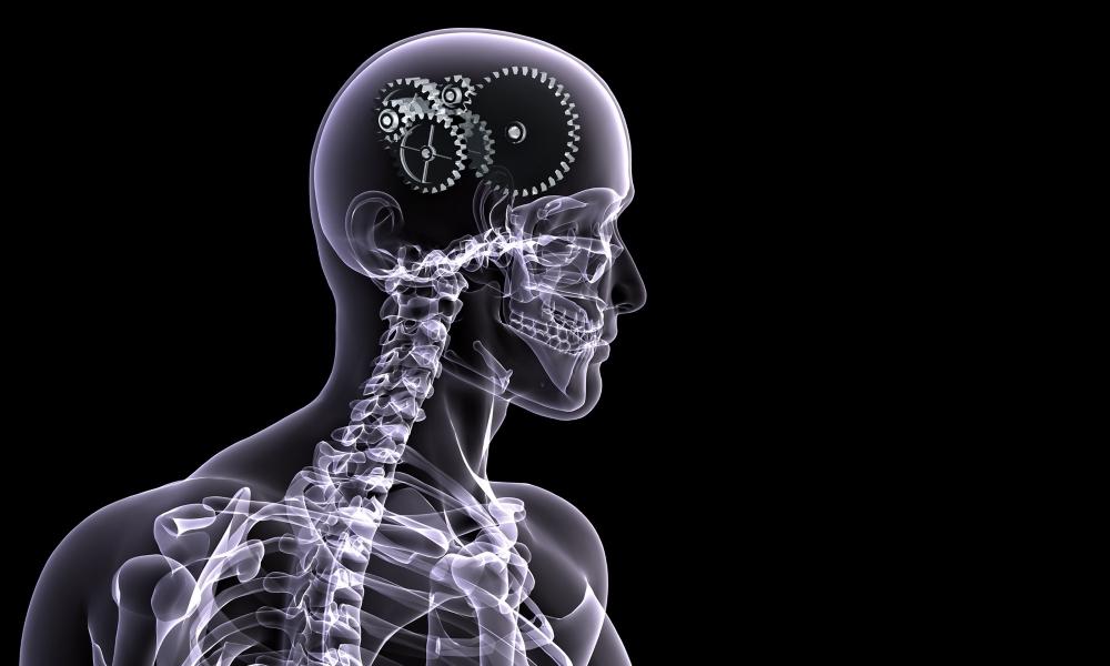 Рентген легких. Что показывает, как делают и что лучше: рентген или флюорография?