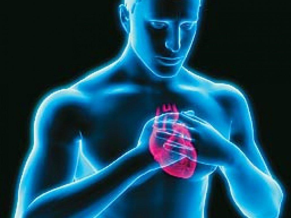 Ученые создали тест, распознающий наследственные болезни сердца ...