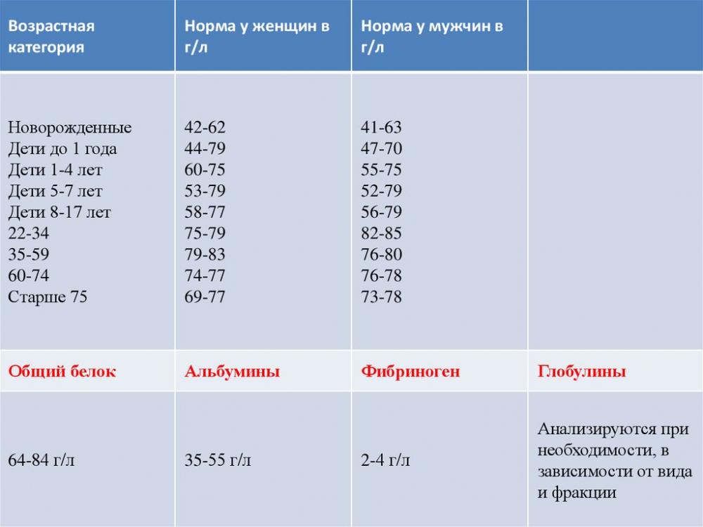 Общий белок. Анализ крови общий белок: норма, отклонения ...