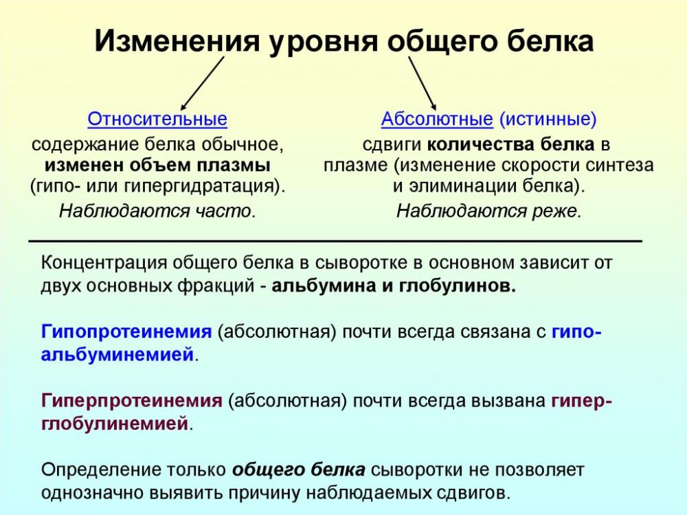 Белки. Биологическая роль, строение, обмен белков в организме ...